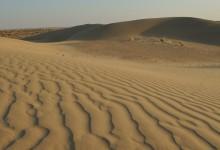 Jaisalmer, Le désert de Thar