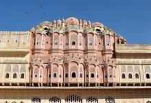 Jaipur, la rose